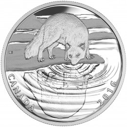 2016 Canadian $10 Reflections of Wildlife: Arctic Fox - 1/2 oz Fine Silver Coin