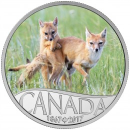 2017 Canada Fine Silver $10 Coin - Celebrating Canada's 150th: Wild Swift Fox and Pups