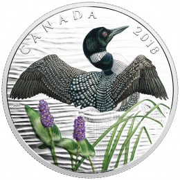 2018 Canadian $10 The Common Loon: Beauty and Grace - Fine Silver Coin