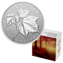 2019 Canadian $10 Maple Leaf - 1/2 oz Fine Silver Coin