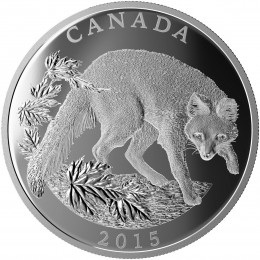 2015 Canadian $125 Conservation Series: The Grey Fox - 1/2 Kilo Fine Silver Coin