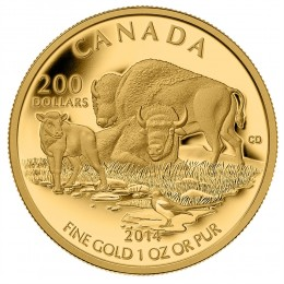 2014 Canada Pure Gold $200 Coin - The Bison: At Home on The Plains