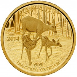 2014 Canada Pure Gold $200 Coin - The White-Tailed Deer: Quietly Exploring