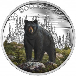 2017 Canadian $20 Majestic Animals: The Bold Black Bear - 1 oz Fine Silver & Gold-plated Coin