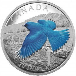 2016 Canadian $20 The Migratory Birds Convention, 100 Years of Protection: The Mountain Bluebird - 1 oz Fine Silver Coin