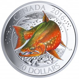2016 Canadian $20 Big Fish Series: Arctic Char 1 oz Fine Silver Coloured Coin