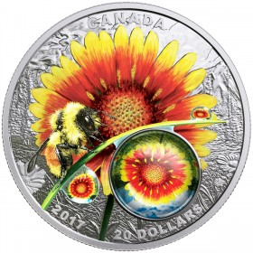 2017 Canadian $20 Mother Nature's Magnification: Beauty Under the Sun - 1 oz Fine Silver Coin
