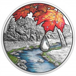 2017 Canada Fine Silver $20 Coin - Jewel of the Rain: Sugar Maple Leaves