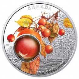 2018 Canadian $20 Mother Nature's Magnification: Morning Dew - 1 oz Fine Silver 3D Coin