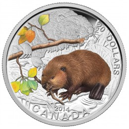 2014 Canadian $20 Baby Animals: Beaver - 1 oz Fine Silver Coin