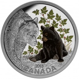 2015 Canadian $20 Baby Animals: Black Bear - 1 oz Fine Silver Coloured Coin