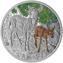 2015 Canadian $20 Baby Animals: White-Tailed Deer - 1 oz Fine Silver Coloured Coin