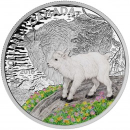 2015 Canadian $20 Baby Animals: Mountain Goat - 1 oz Fine Silver Coloured Coin