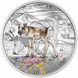 2016 Canadian $20 Baby Animals: Caribou - 1 oz Fine Silver Coin