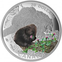 2016 Canadian $20 Baby Animals: Porcupine - 1 oz Fine Silver Coin