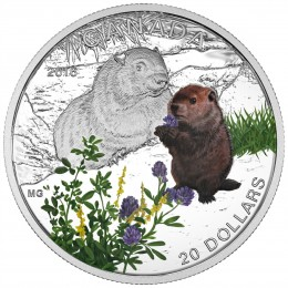 2016 Canadian $20 Baby Animals: Woodchuck - 1 oz Fine Silver Coin
