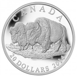2014 Canada Fine Silver $20 Coin - The Bison: The Bull and His Mate