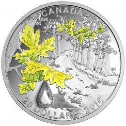 2016 Canada Fine Silver $20 Coin - Jewel of the Rain: Bigleaf Maple