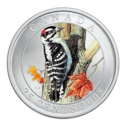 2008 Canadian 25-Cent Birds of Canada #3: Downy Woodpecker Coloured Coin