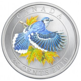 2010 Canadian 25-Cent Birds of Canada: Blue Jay Coloured Coin