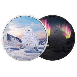 2018 Canadian $30 Arctic Animals and Northern Lights: Snowy Owl - 2 oz Fine Silver Coin (Glow-in-the-Dark)