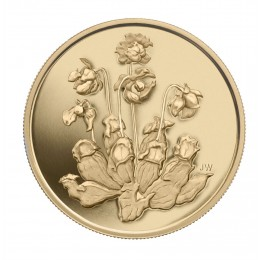 2009 Canada Pure Gold $350 Coin - Pitcher Plant