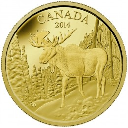 2014 Canada Pure Gold $350 Coin - The Majestic Moose