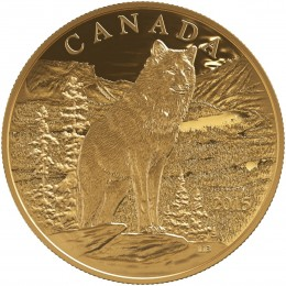 2015 Canada Pure Gold 350 Dollar Coin - Imposing Alpha Wolf