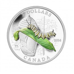 2014 Canada Fine Silver $3 Coin - Animal Architects: Caterpillar and Chrysalis