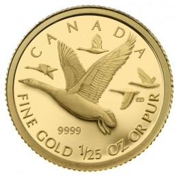 2011 Canada 1/25 oz Pure Gold 50 Cent Coin - Canada Geese