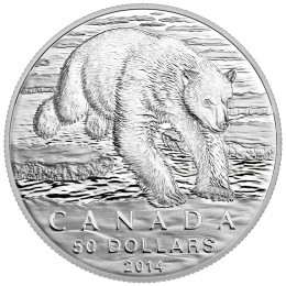 2014 Canada Fine Silver $50 Coin - $50 for $50 - Iconic Polar Bear