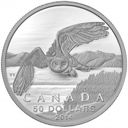 2014 Canada Fine Silver $50 Coin - $50 for $50 - Snowy Owl