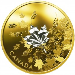 2017 Canada Fine Silver $50 Coin - Whispering Maple Leaves