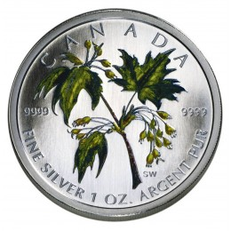 2003 Canadian $5 Coloured Silver Maple Leaf: Summer 1 oz Fine Silver Coin