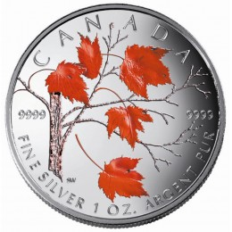 2004 Canadian $5 Coloured Silver Maple Leaf: Winter 1 oz Fine Silver Coin