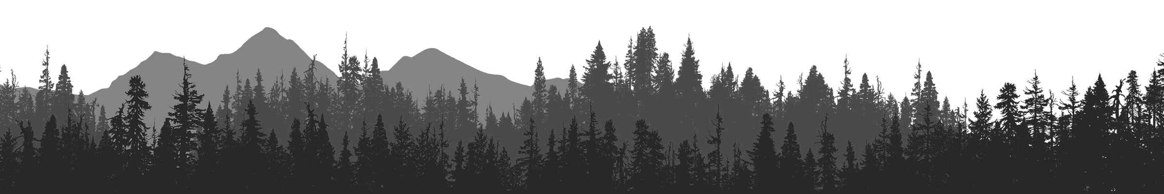 Canadian forest and mountain at dusk background